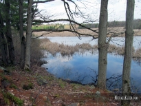 Cranberry Creek Battlefield, outside Alexandria Bay, New York. Photo by Michael Kleen
