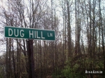 Dug Hill Lane outside Jonesboro, Illinois. Photo by Michael Kleen