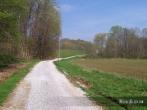 Dug Hill Lane outside Jonesboro, Illinois. Photo by Michael Kleen