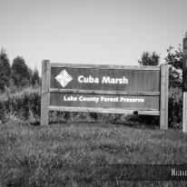 The environs of Cuba Road in Lake County, Illinois. Photo by Michael Kleen
