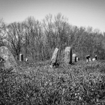 Harrison Cemetery in Buckner, Illinois. Photo by Michael Kleen