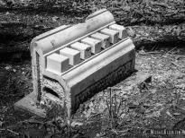 Harrison Cemetery in Buckner, Illinois. Photo by Michael Kleen