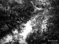 Lakey Creek outside McLeansboro, Illinois. Photo by Michael Kleen