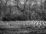 Peoria State Hospital Cemetery in Bartonville, Illinois. Photo by Michael Kleen
