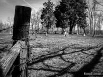 Ramsey Cemetery in Effingham County, Illinois. Photo by Michael Kleen