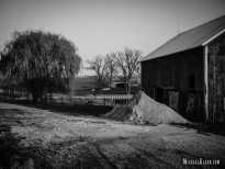 Willow Creek Farm in Carroll County, Illinois. Photo by Michael Kleen