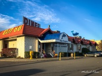 Blue Dolphin Diner in Apalachin, New York. Photo by Michael Kleen